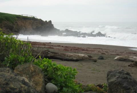 Cambria Beach January 2010